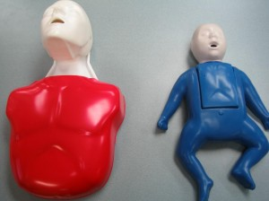 Adult and infant training mannequins